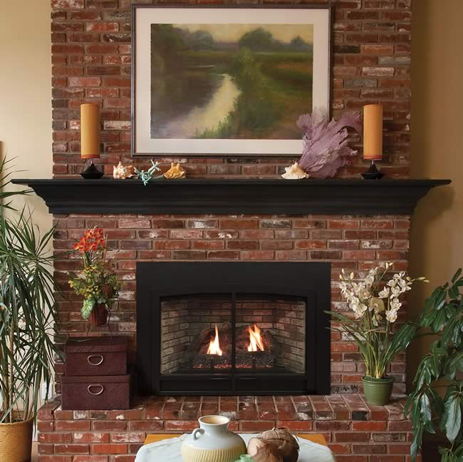 White Mountain Hearth Innsbrook Large Direct Vent Insert | Fine's Gas