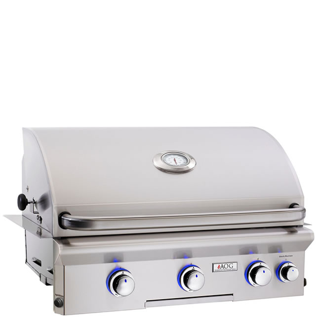 American Outdoor Grill 30 Inch Built In