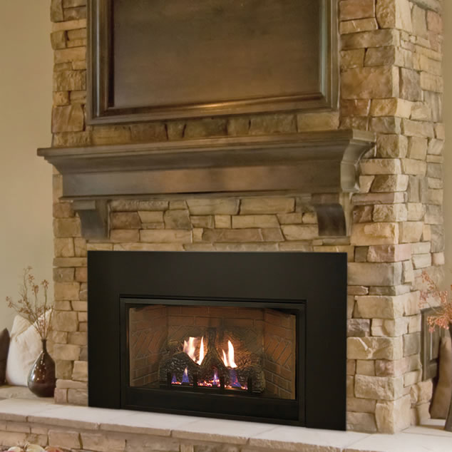 Empire Small Vent-Free Fireplace Insert | Fine\'s Gas
