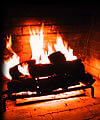 Gas logs for the fireplace